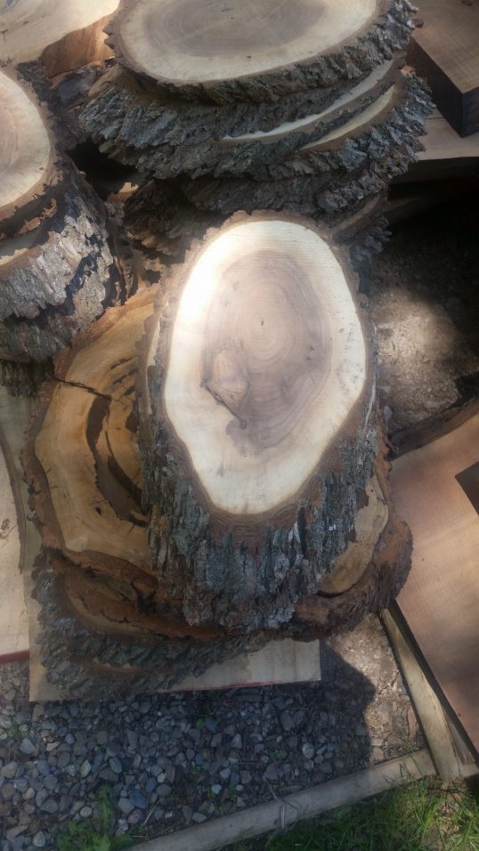 Black Walnut Round Slabs