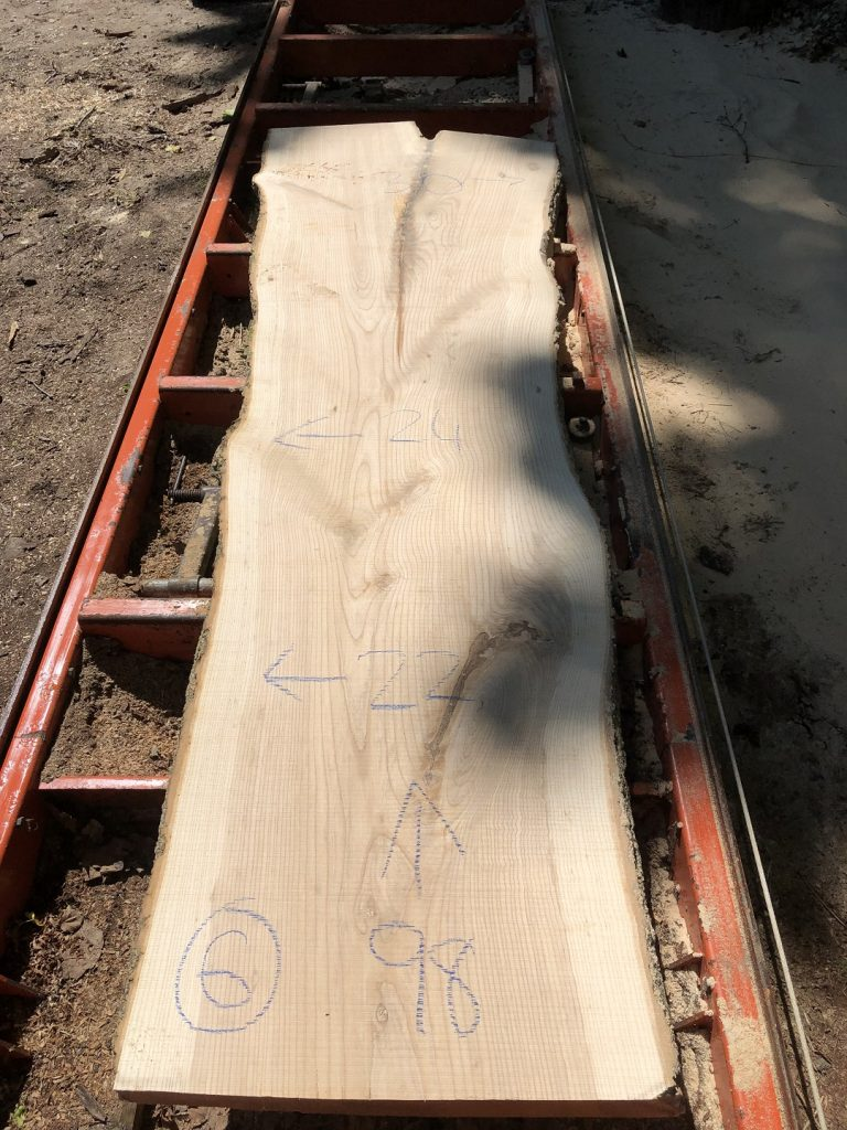 Live Edge White Ash Wood Slab