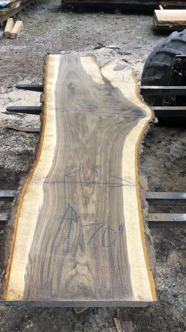 Edge Black Walnut Wood Slab